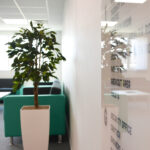 reception-sofa-breakout-furniture-office-plant-entrance